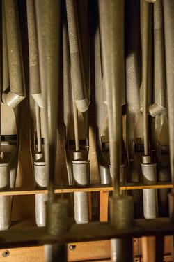 Horn Diapason & Oboe Horn