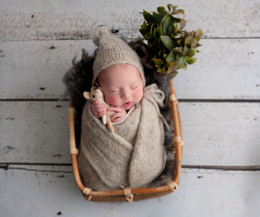 baby boy in basket professional shoot wirral