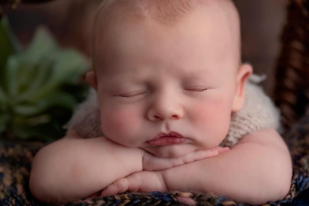 Newborn professional studio photographer