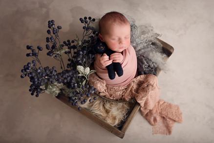 pretty props newborn session