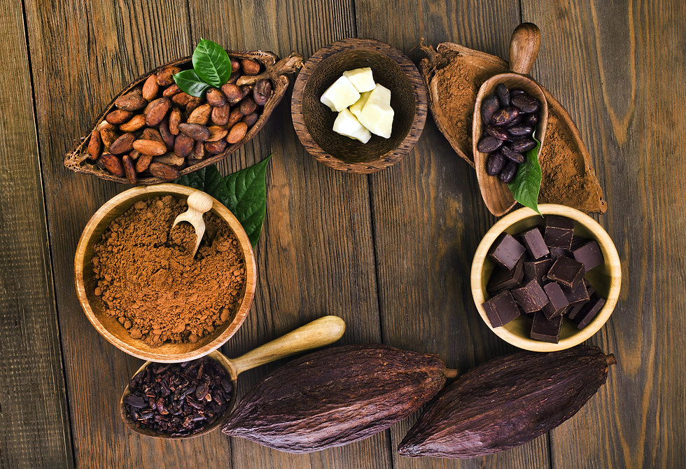 Cocoa beans and cocoa powder, cacao butter and cacao nibs and chocolate on a wooden background