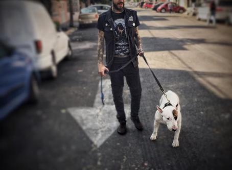 Donovan Hernández, tatuador mexicano rompiéndola en Berlín
