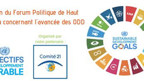 LOCAL AND REGIONAL AUTHORITIES IN THE SDG REPORTING PROCESS - TOWARDS THE 2020 HLPF