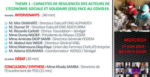 RESILIENCE CAPACITIES OF ACTORS IN THE SOCIAL AND SOLIDARITY ECONOMY WITH RESPECT TO COVID19