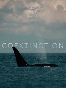 Coextinction