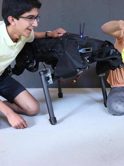 CHIP Robot Dog + Friends