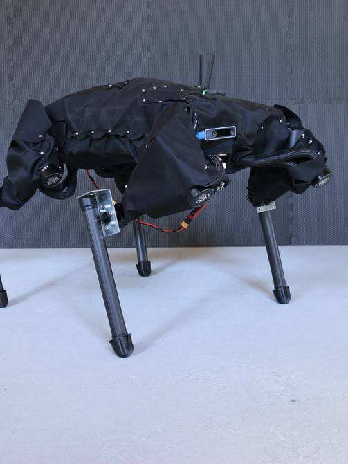 CHIP Robot Dog