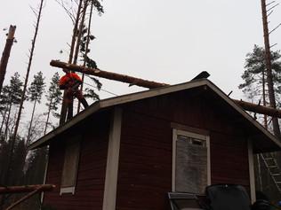 Myrskypuut - Mäki-Tulokas Oy