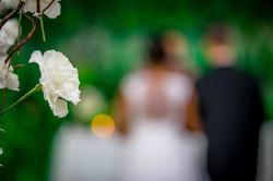 casamento African house garden