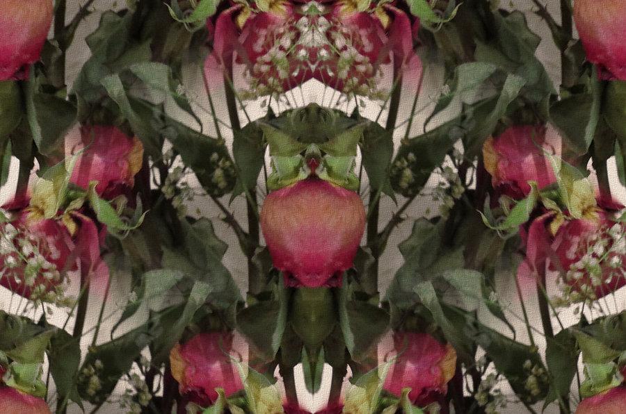 digital art with roses, image of roses, digital art with faded roses, image of flowers, image with antiqued colors,digital art with flowers,digital art by Jodi DiLiberto