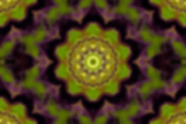 Digital mandala of a circle of bees encircled by a bright green and dark purple lotus,Digital Art by Jodi DiLiberto
