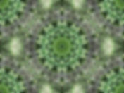 Digital image of green mandala, digital art with green mandala, image of abstract glassy web, abstract digital image of glassy web, circular image, digital art by Jodi DiLiberto