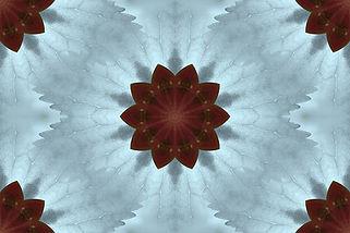 image of a stylized flower on a blue background, image by Jodi DiLiberto