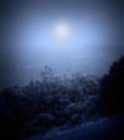 Enhanced photograph of a dark winter night, with a large glowing star. Photomanipulation by Jodi DiLiberto