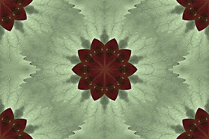 image of a stylized flower on a light green background, image by Jodi DiLiberto