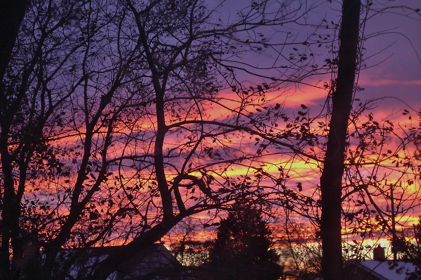 photograph of sunset,photograph of evening,photograph of winter evening,silhouettes of trees