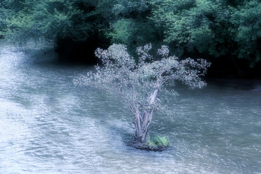 image of a faerie island on a river, photomanipulation by Jodi DiLiberto, photograph of a tree on a river,photograph of an island