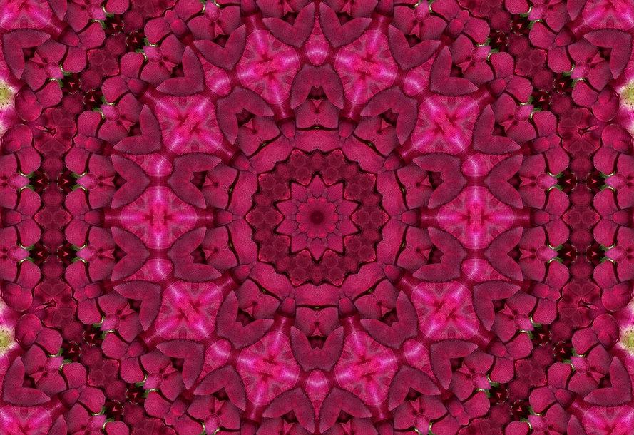 digital image of a red and pink mandala, digital image of rose petals, digital image resembling cobblestones, digital art by Jodi DiLiberto