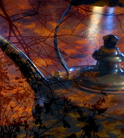 Surrealistic photo of a tea kettle amid sunset clouds and silhouettes of branches. Photo by Jodi DiLiberto