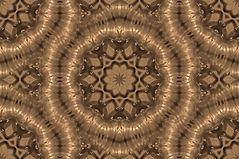 image of golden satin look rings, image by Jodi DiLiberto