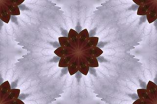 image of a stylized flower on a lavender  background, image by Jodi DiLiberto