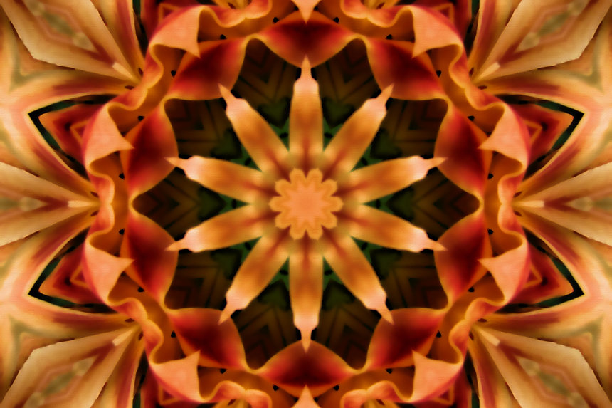Digital image of a mandala resembling orange ribbons, digital image by Jodi DiLiberto