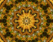 Digital image of a kaleidoscope of autumn colors in yellow orange green. Digital image by Jodi DiLiberto