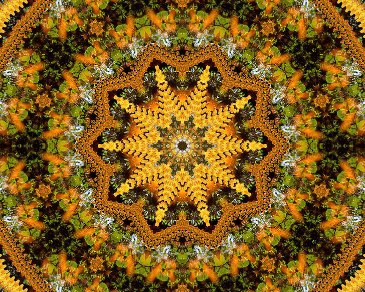 Digital image of a kaleidoscope of autumn colors in yellow orange green. Digital image by Jodi DiLiberto