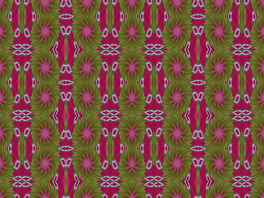 image of dancing stars with bright pink columns, image by Jodi DiLiberto