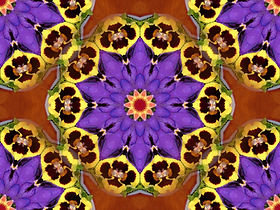 Image of a mandala with pansies, digital art with pansies, purple yellow and orange image, purple yellow and orange digital art, digital art by Jodi DiLiberto