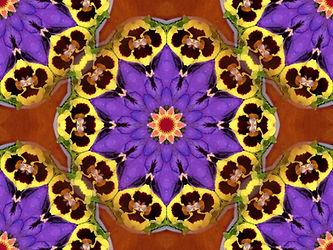 Image of a mandala with pansies, digital art with pansies, purple yellow and orange image, purple yellow and orange digital art, digital art by Jodi DiLiberto