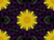 Digital image of a daisy on an abstract background of purple twigs, digital art by Jodi DiLiberto