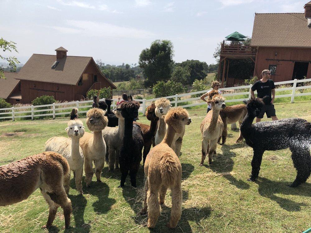 Group Farm Tour ($30 per guest)