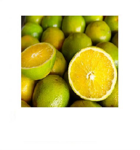 laranja1.png