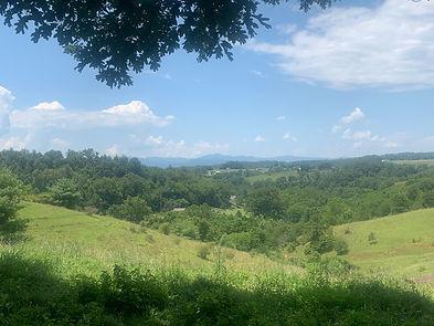 view by gate.JPG