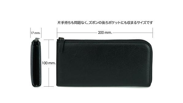 Long Wallet-Size.jpg