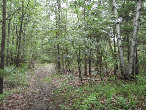 Marlene Schroeder Trail.JPG