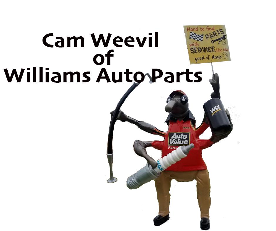 Cam Weevil