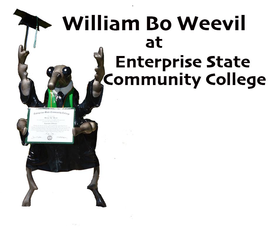 William Bo
