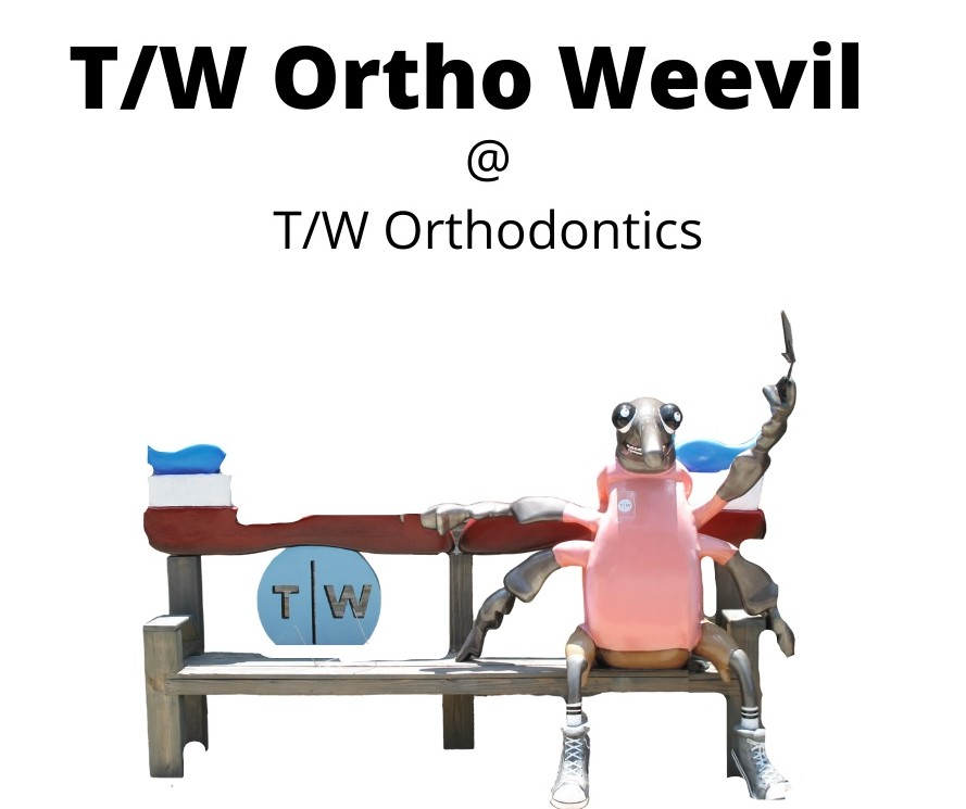 T_W Ortho Weevil