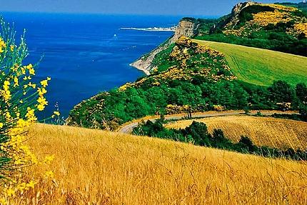 Pesaro_Colle-San-Bartolo.webp