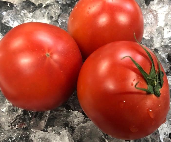 総社産 ふくトマト
