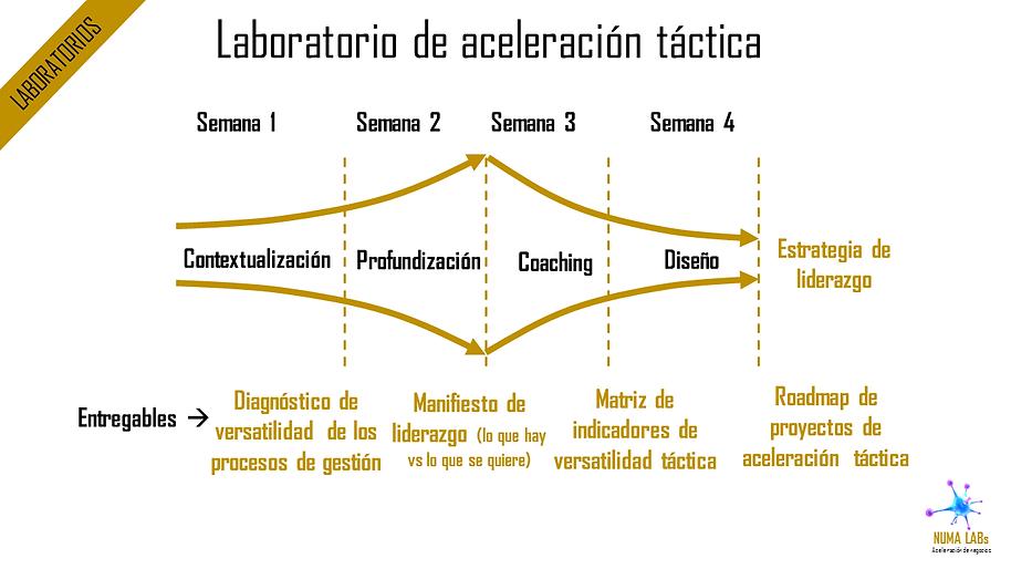 Laboratorios de Aceleración Táctica | NUMA LABs