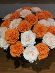 ramo de 24 rosas premium $530.000.jpg