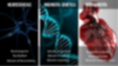Seminarios | Formación para la Aceleración | Numa Labs