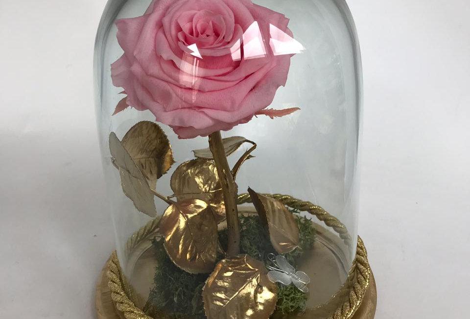 Flor Bella Hojas Doradas Cúpula Pequeña (22x16)