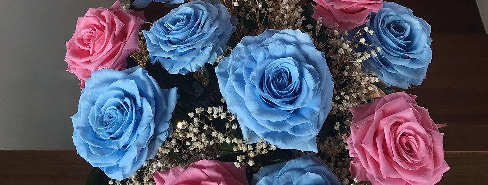 12 Rosas Premium Con Gypso