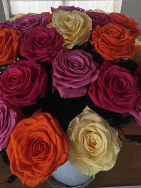 Ramo 24 rosas premium 4 colores $550.000