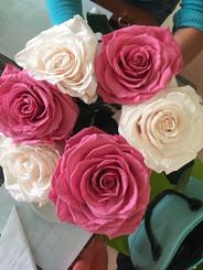 Ramo Seis rosas Premium 2 colores $160.0