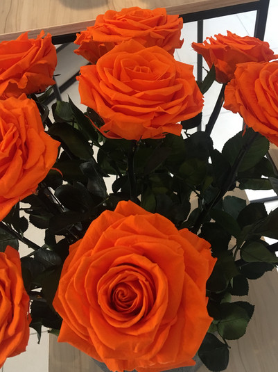 Ramo 9 rosas premium $225.000.jpg